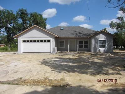 Debary Single Family Home For Sale: 120 Floridana Road