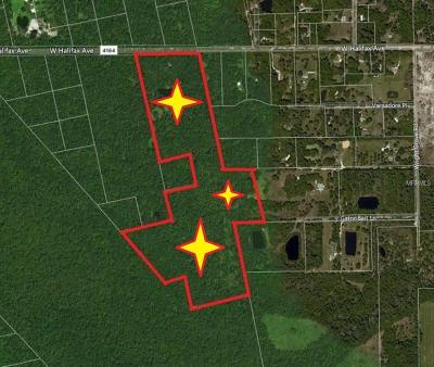 Volusia County Residential Lots & Land For Sale: 643 Maytown Road