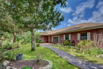 Deland Single Family Home For Sale: 2195 Guava Street