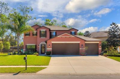Orange City Single Family Home For Sale: 1715 Waterside Oaks Drive