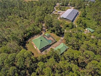 Flagler County, Volusia County Single Family Home For Sale: 9030 State Road 46