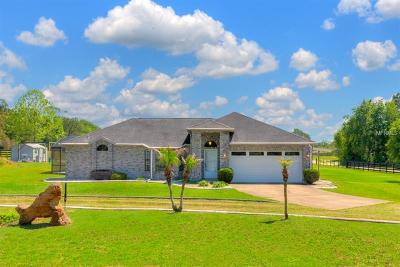 Deland Single Family Home For Sale: 1649 Fatio Road