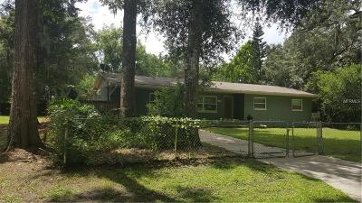 Deland Single Family Home For Sale: 2256 Magnolia Drive