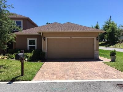 Deland Townhouse For Sale: 110 Tammie Sue Lane