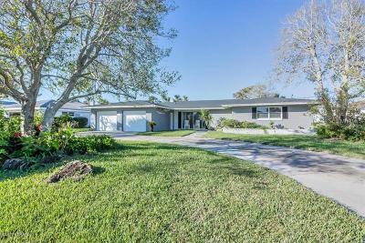 Ormond Beach Single Family Home For Sale: 414 Triton Road
