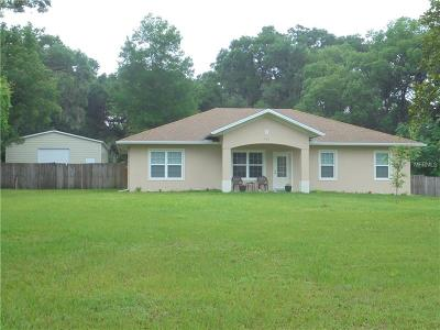 Deland Single Family Home For Sale: 721 S Woodward Avenue