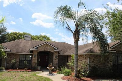 Debary Single Family Home For Sale: 538 S Pine Meadow Drive