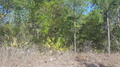 Volusia County Residential Lots & Land For Sale: Chestnut Avenue