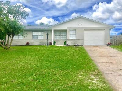Deltona Single Family Home For Sale: 1325 Ferendina Drive