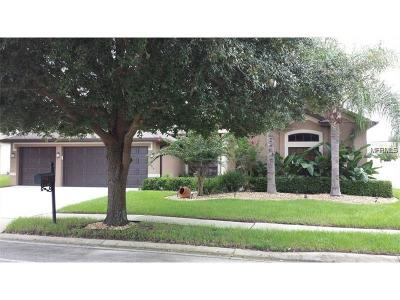 Orange City Single Family Home For Sale: 1189 Oak Landing Drive