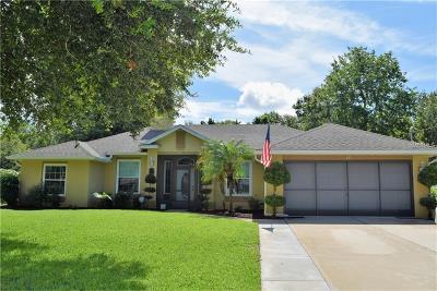 Deltona Single Family Home For Sale: 171 Poinciana Lane