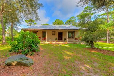 Lake Helen Single Family Home For Sale: 1150 Old Enterprise Road