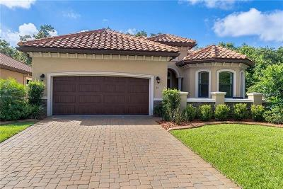 Ormond Beach Single Family Home For Sale: 21 Apian Way
