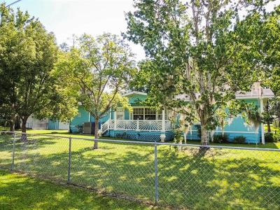 Astor Single Family Home For Sale: 56240 Maple Road
