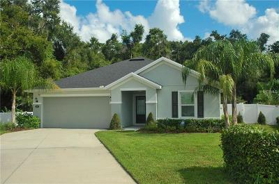 Deland Single Family Home For Sale: 651 Carya Court