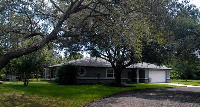 Debary Single Family Home For Sale: 176 Briarwood Drive