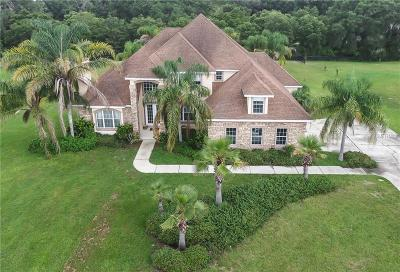 Deland Single Family Home For Sale: 1421 Shady Meadow Lane