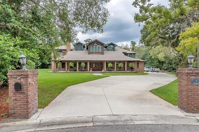 Ormond Beach Single Family Home For Sale: 9 Tidewater Drive