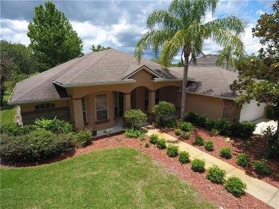 Volusia County Single Family Home For Sale: 100 James Pond Court