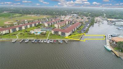 Volusia County, Seminole County, Orange County Condo For Sale: 715 S Beach Street #103D