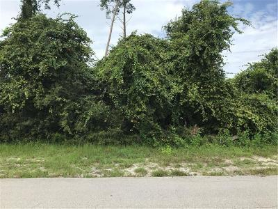 Residential Lots & Land For Sale: 2452 Ainsworth Avenue