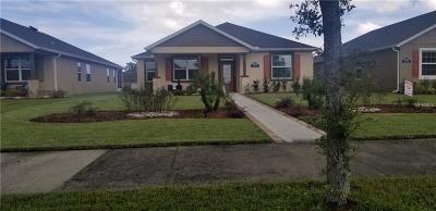 New Smyrna Beach Single Family Home For Sale