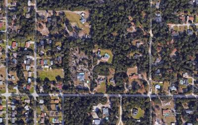 Orange City Residential Lots & Land For Sale: 1355 W Blue Springs Avenue