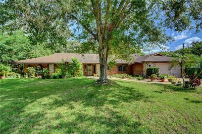Deland Single Family Home For Sale: 1116 Heartwood Drive