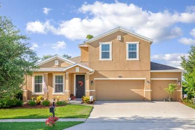 Deland Single Family Home For Sale: 303 Orchard Hill St