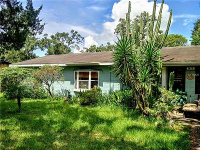 Deland  Single Family Home For Sale: 1413 E Voorhis Avenue