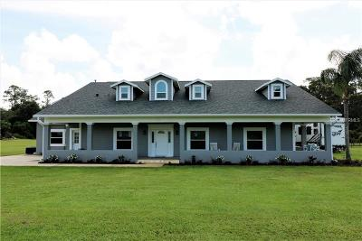Deland Single Family Home For Sale: 3281 Marsh Road