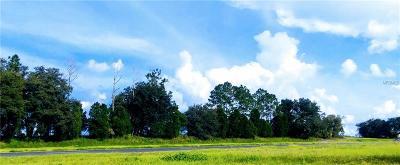 Zephyrhills Residential Lots & Land For Sale: N Gall Boulevard