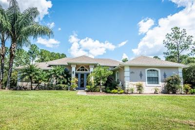 Eustis Single Family Home For Sale: 29945 Violet Avenue