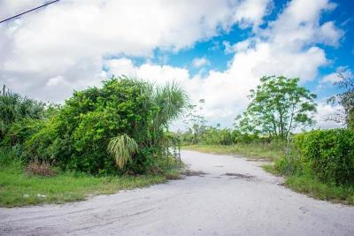 Orange County, Osceola County Residential Lots & Land For Sale: 1416 S Lake Pleasant Road