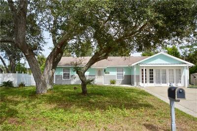 Deltona  Single Family Home For Sale: 1945 E Acadian Drive