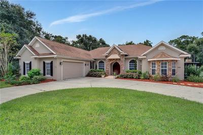 Deland Single Family Home For Sale: 990 Wood Site Drive