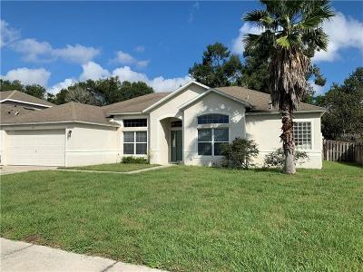 Deland Single Family Home For Sale: 307 Blue Crystal Drive