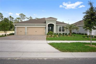 Deland Single Family Home For Sale: 295 Northcote Court