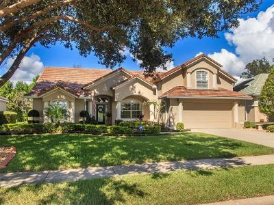 Debary Single Family Home For Sale: 117 Hammock Oak Circle