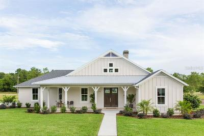 Lake Helen Single Family Home For Sale: 375 W Delaware Avenue