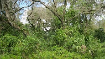 Volusia County Residential Lots & Land For Sale: Spring Garden Avenue