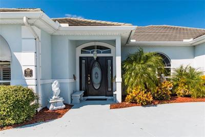 Daytona Beach Single Family Home For Sale: 920 Sea Duck Drive