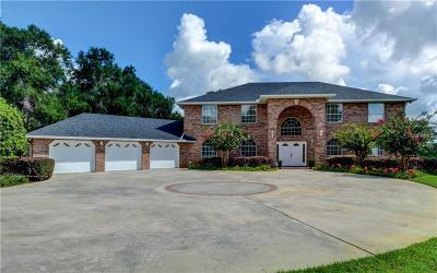 Deland Single Family Home For Sale: 3957 State Road 11