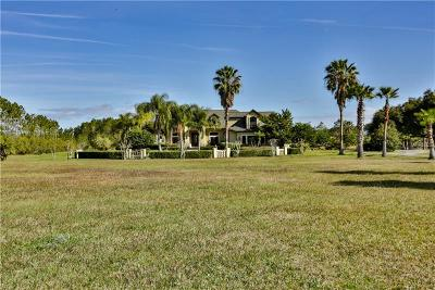 New Smyrna Beach Single Family Home For Sale: 231 County Road 415