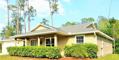 New Smyrna Beach Single Family Home For Sale: 875 Twisted Pine Drive