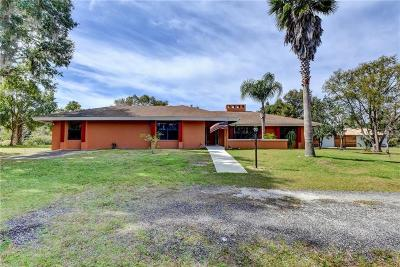 Deland Single Family Home For Sale: 1560 S Pearl Street