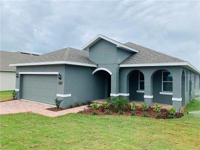 Volusia County Single Family Home For Sale: 1805 10th Avenue