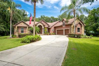 Deland Single Family Home For Sale: 2301 Glenwood Plantation Rd