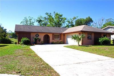 Orange City Single Family Home For Sale: 670 E Iris Drive