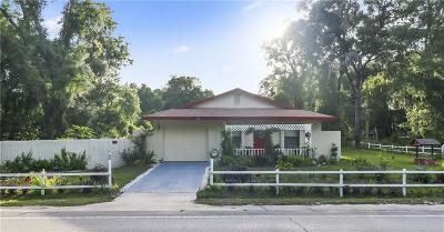 Orange City Single Family Home For Sale: 1085 Hamilton Avenue